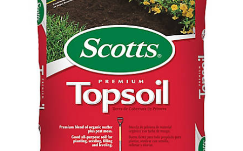 What Is Topsoil?